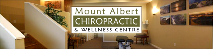 Mount Albert Chiropractic - Wide copy 1